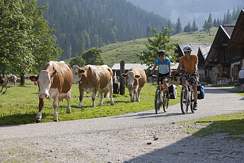 Austria, Tyrol, Man and woman cycling through road - DSF000595