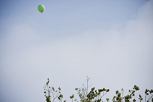 Netherlands, Utrecht, Green balloon in sky over tree - FLF000082