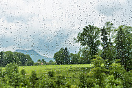 Austria, Raindrops on window - WVF000240