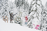 Austria, Salzburg County, Boy and girl having fun with christmas tree in snow - HHF004250