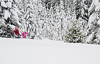 Austria, Salzburg County, Boy and girl walking through snow and watching christmas tree - HHF004255