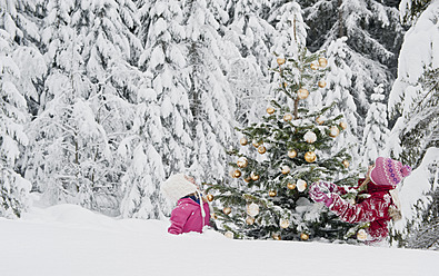 Austria, Salzburg County, Girls watching christmas tree in snow - HHF004256