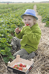 Germany, Saxony, Boy eating strawberry in field, close up - MJF000046