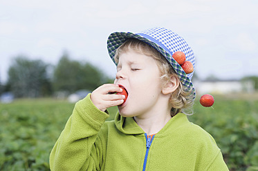 Germany, Saxony, Boy eating strawberry in field, close up - MJF000048
