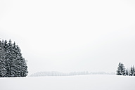 Germany, Bavaria, View of winter landscape - FLF000096