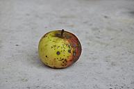 Germany, Bavaria, Close up of rotten apple - AXF000130