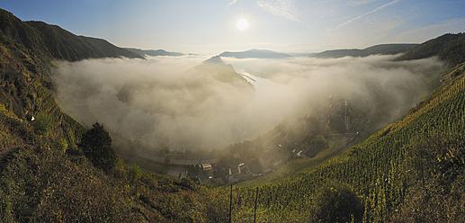 Germany, Rhineland-Palatinate, Fog in valley of Moselle loop at sunrise - RUEF000881