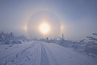 Germany, Saxony, View of sundog with snowy landscape - RUEF000889