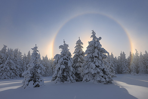 View of sundog with snowy landscape - RUEF000895