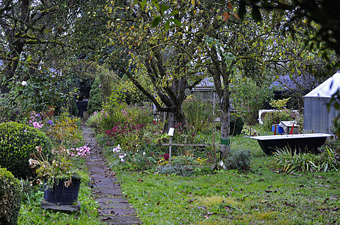 Germany, Bavaria, View of allotment garden - AXF000134