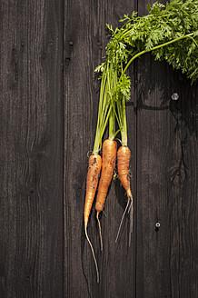 North Rhine Westphalia, Close up of carrots on table - KJF000168