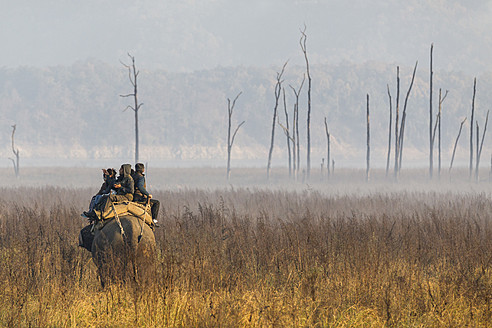 India, Uttarakhand, Mahout with tourists at Jim Corbett National Park - FO004073