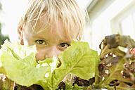 Germany, Bavaria, Boy with salad, portrait - RNF000982