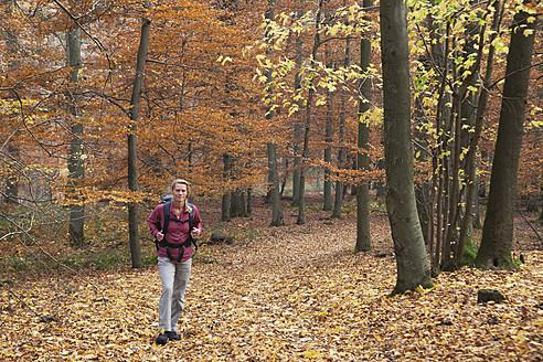 Germany, North Rhine Westphalia, Mature woman hiking in autumn forest - GWF001969