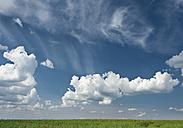 Germany, Cumulus clouds over rape field - WBF001246