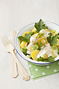 Potato salad garnished with spring onions, parsley and mayonnaise, close up - ECF000034