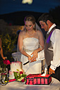 USA, Texas, Bride and groom cutting cake - ABAF000241