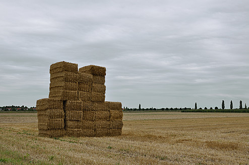 Germany, Bavaria, View of filed with hay bales - AXF000266