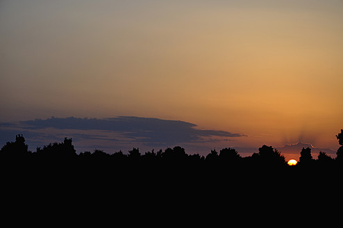 Germany, Bavaria, Silhouette of bushes during sunset - AXF000256