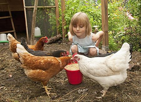 Germany, Brandenburg, Girl on hen farm - BFRF000020