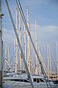 Spain, Palma, Mallorca, View of sailing boats - MAEF004946