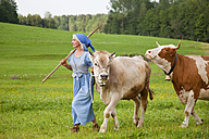 Germany, Bavaria, Mature woman with cow on farm - HSIYF000066