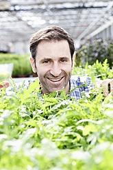 Germany, Bavaria, Munich, Mature man in greenhouse with rocket plants - RREF000011
