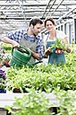 Germany, Bavaria, Munich, Mature man and woman watering rocket plant in greenhouse - RREF000082