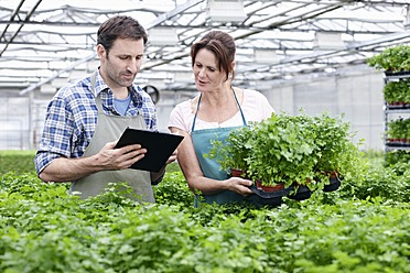 Germany, Bavaria, Munich, Mature man and woman with clip board in greenhouse - RREF000021