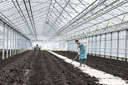 Germany, Bavaria, Munich, Mature man digging soil with garden fork in greenhouse - RRE000086