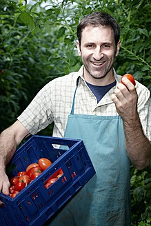 Germany, Bavaria, Munich, Mature man harvesting tomatoes in greenhouse - RREF000045