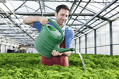 Germany, Bavaria, Munich, Mature man in greenhouse watering parsley plants - RREF000066