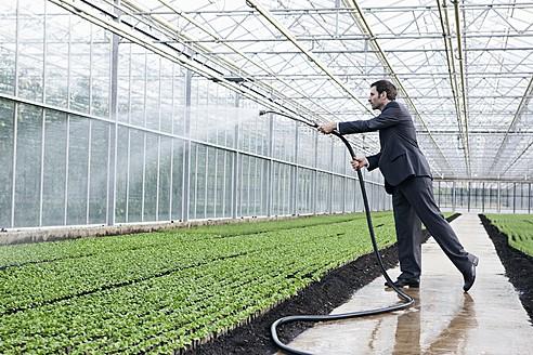 Germany, Bavaria, Munich, Mature man in greenhouse watering seedlings - RREF000069