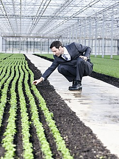 Germany, Bavaria, Munich, Mature man examining seedlings in greenhouse - RREF000071