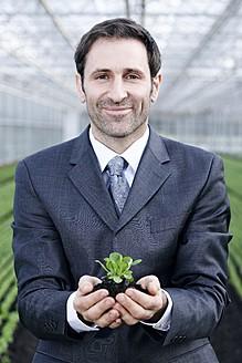 Germany, Bavaria, Munich, Mature man in greenhouse with corn salad - RREF000074