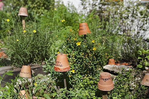 Germany, Flower pots on wooden sticks showing names of herbs - TCF002889