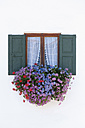 Germany, Bavaria, Geranium on window sill - TCF002912