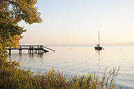 Germany, Bavaria, Sailing boat on Lake Ammersee, reed in foreground - UMF000525