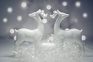 Christmas decoration with deer, close up - MJF000167