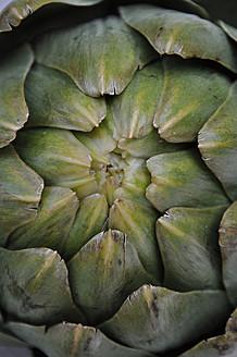 Close up of artichoke - AXF000353