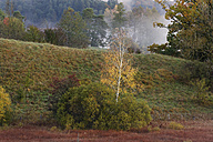 Germany, Bavaria, View of landscape in autumn - SIEF002901