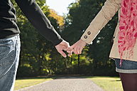 Germany, Berlin, Couple holding hands in park, close up - BFRF000128
