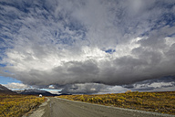 USA, Alaska, View of Denali Highway in autumn - FOF004395