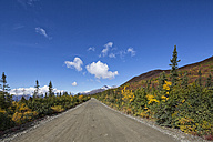USA, Alaska, View of Denali Highway in autumn - FOF004399