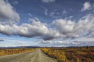 USA, Alaska, View of Denali Highway in autumn - FOF004401