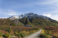 USA, Alaska, View of Denali Highway in autumn - FOF004406