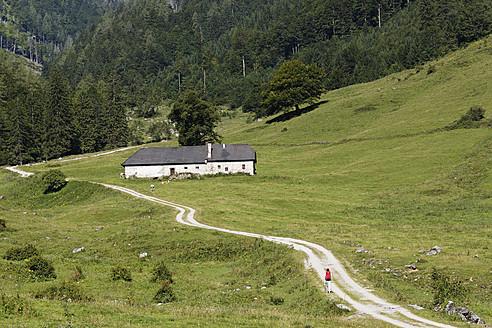 Austria, Upper Austria, View of Limestone Alps National Park - SIEF003028