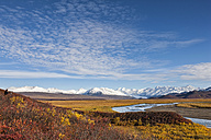 USA, Alaska, View of McLaren River, McLaren Glacier and Alaska Range - FOF004468