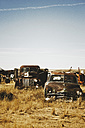 Canada, Junk yard with old US cars - MSF002809