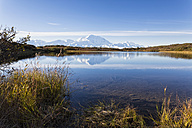 USA, Alaska, View of Mount Mckinley and reflection of pond at Denali National Park - FOF004552
